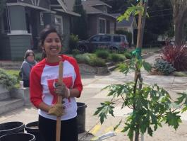 My City Forest Volunteering